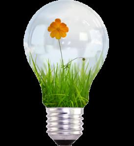 CSR bulb
